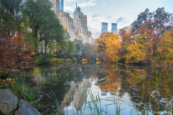 צבעי שלכת חמים, כתום צהוב וירקרק עשיר מקרינים שלווה של בוקר כאשר ברקע משתקפים בנהר גורדי השחקים הנפלאים של העיר ניו יורק. תמונה מתוחה על קנבס מושלמת לסלון מוצף שמש בסגנון מודרני היי טקיסטי מעוצב