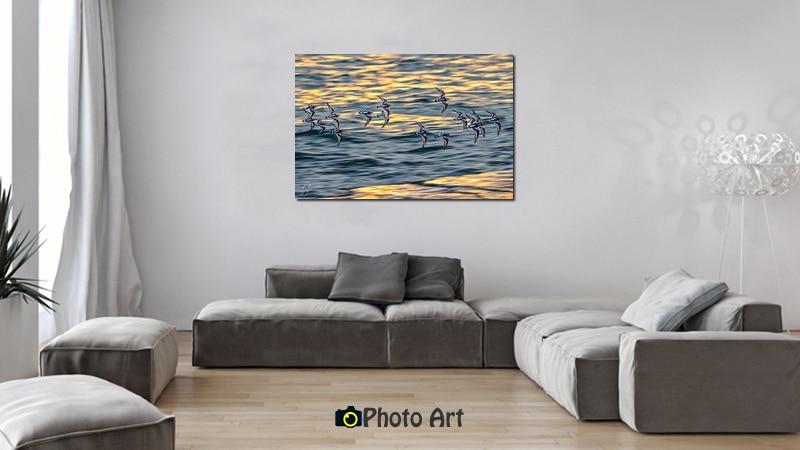 הדמיה בסלון של רחף ועוד מגוון צילומים למכירה
