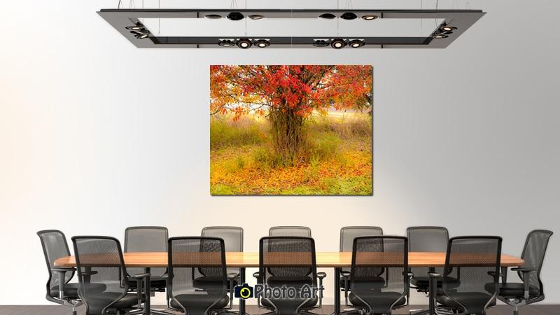 תמונה ממבחר תמונות מיוחדות לסלון