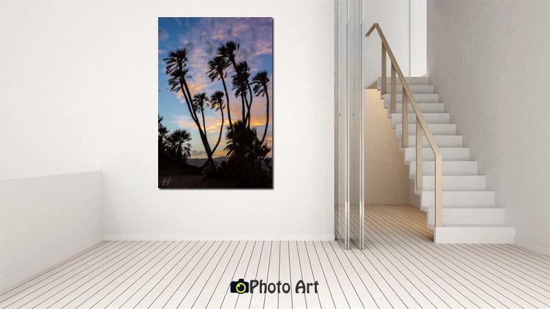הדמיית תמונת דקלים ועוד מגוון תמונות מיוחדות לבית