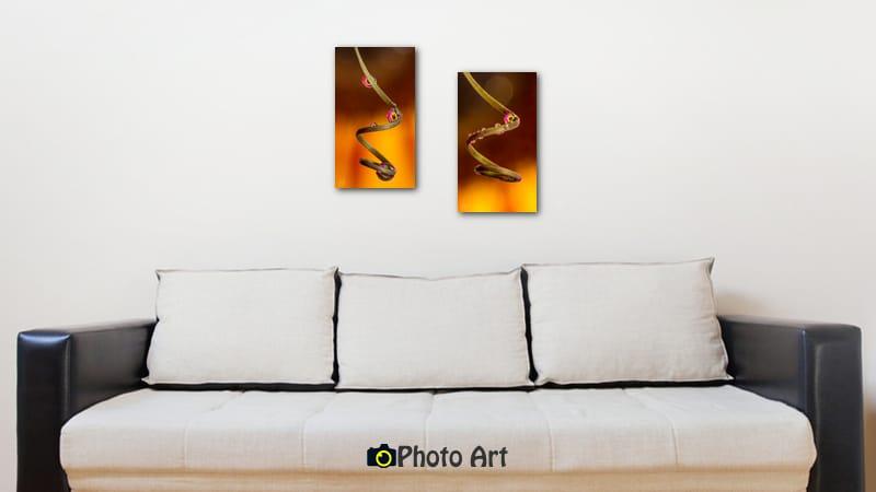 צמד תמונות לסלון מודרני של טיפות גולשות מטה