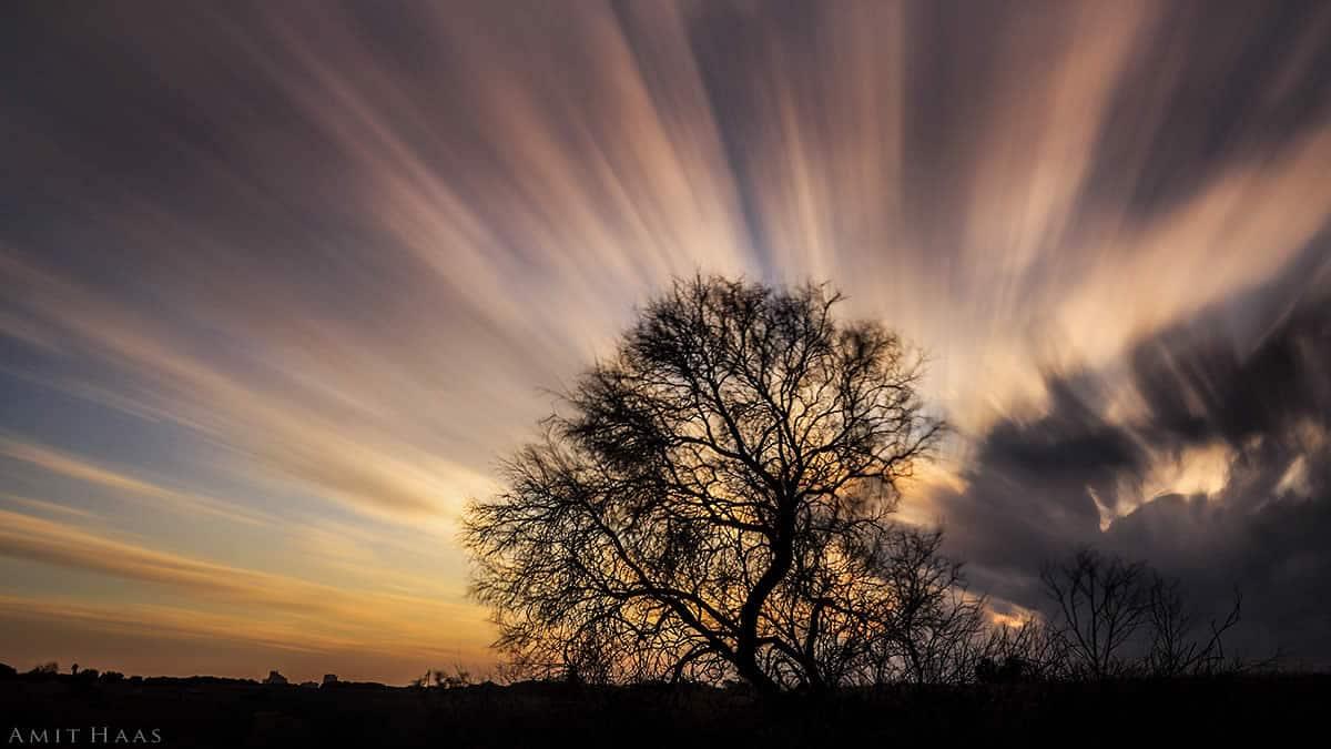 צילום מיוחד המראה את תנועת העננים בזמן שקיעת השמש כשהם נעים בזמן החשיפה בשעת הצילום כך שנראים כקרני אור הנפרשים מן העץ למרחב הגדול. תמונה מיוחדת לסלונכם