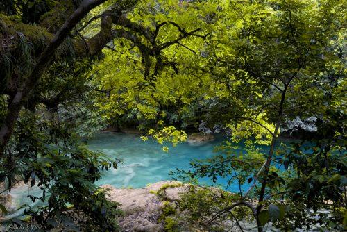 מבין העצים מתגלה צבע הטורקיז של הנהר ויוצר תמונת טבע שקטה ומרגיעה. כשתתלו אותה אצלכם בסלון תגלו גם את האנרגיה המתפרצת מתנועת המים שאינה פוסקת