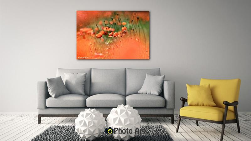 פרגים באביב כתמונת אווירה בסלון בגוונים מונוכרומטיים