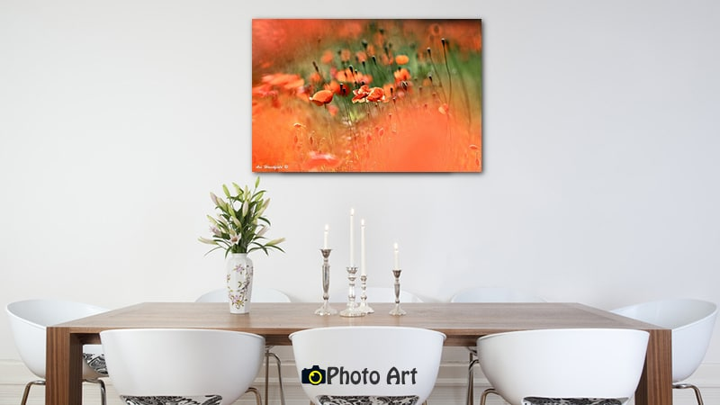 הדמיה על קיר פינת האוכל של תמונת פרגים באביב