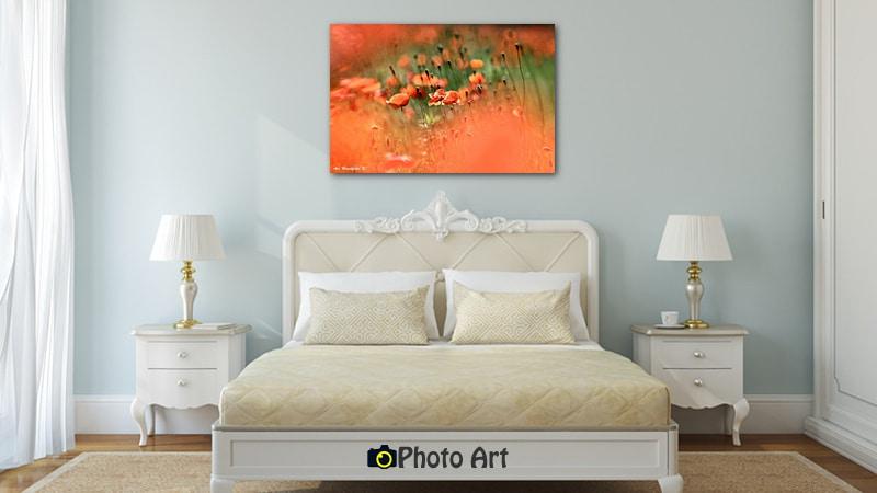 תמונה לחדר שינה יוקרתי של פרגים באביב