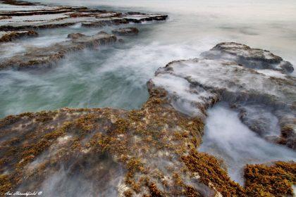 ערפילים רכים מלטפים את פני הים ואת הסלעים מכוסי הצמחייה הנמוכה ומעניקים נופך חלומי ומסתורי לתמונה יפה זו, שתיראה נפלא בהדפסה בממדים גדולים בסלון הבית או במשרד