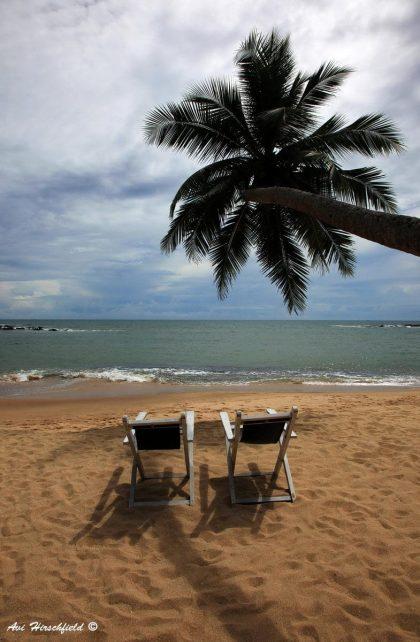 כשאנחנו חולמים על אי טרופי, זאת התמונה שעולה בראשנו: חול חום בהיר ורך, ים בגוני כחול-ירוק ושמיים כחולים מרהיבים, זוג כיסאות נוח ועץ דקל הנותן צלו. תמונה שתכניס אווירה של חופש לסלון או לחדר השינה