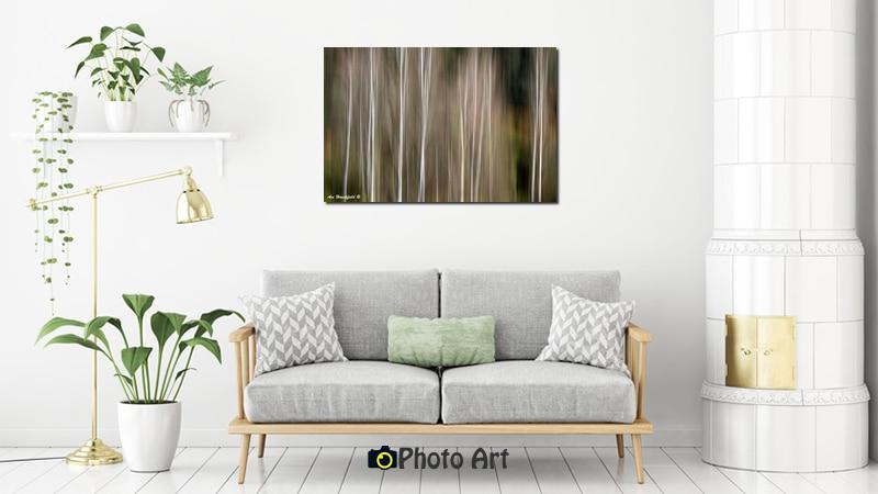 תמונת עצי הצפצפה בהדמיה של תמונות לסלון