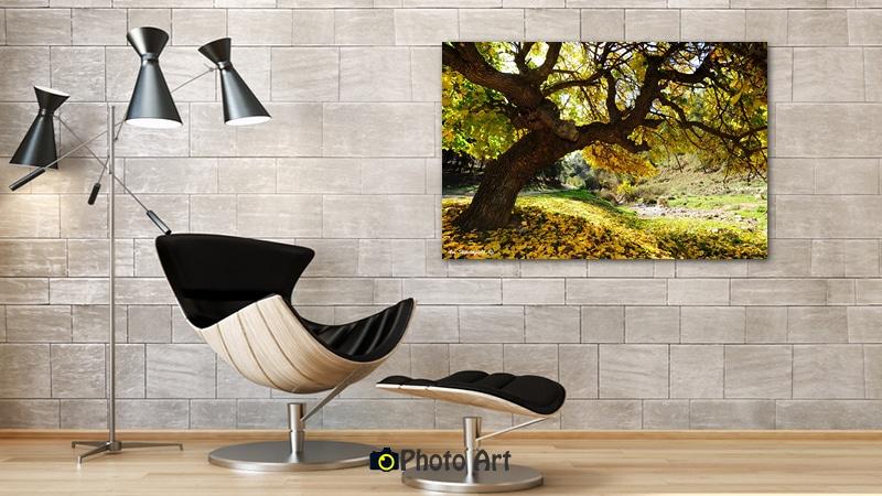 הדמיית תמונת אווירה לסלון של עץ צהוב בשלכת