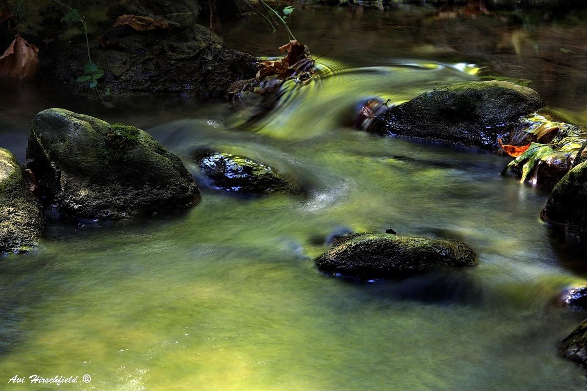 תנועת המים הירקרקים שוחקת את האבנים השחורות-חומות באיטיות ומחליקה את פניהן המכוסה אזוב רך. תמונה הלוכדת את הדינמיות של זרם המים ומתאימה לסלון או לחדר שינה המעוצבים בגוונים טבעיים