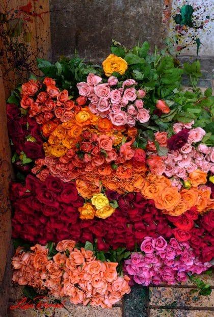 חבילות ורדים ססגוניות בשוק הפרחים במרקש שבמרוקו עם נגיעות של צבעי מים. תמונה שתכניס צבערב לסלון, לחדר שינה או למשרד