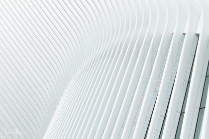 תמונת קווים של קשת ממגוון תמונות שחור לבן מקוריות