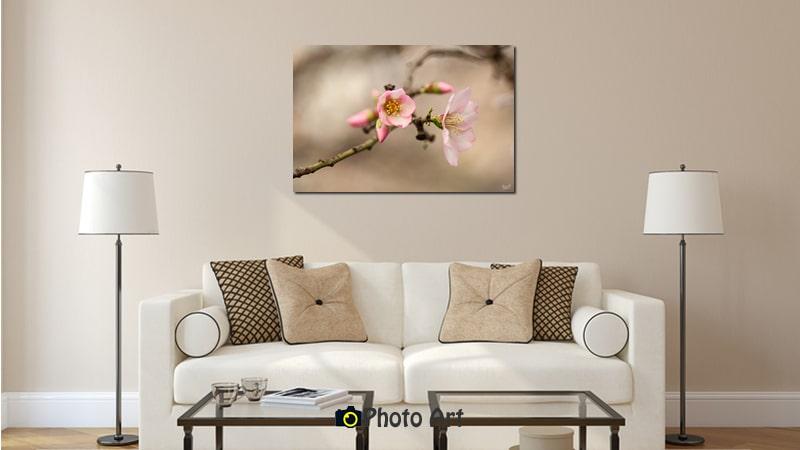 הדמיה של תמונה לסלון הנקראת פריחת שקד באור רך