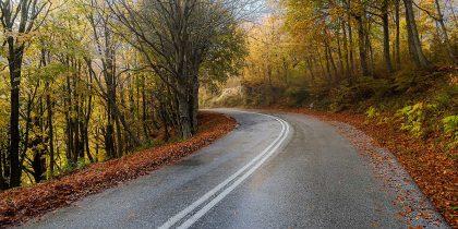 תמונת דרך של צבעים ועוד מבחר תמונות של סתיו של אתר התמונות פוטו ארט