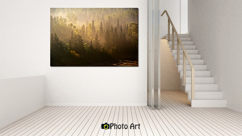 תמונת הדמיה של ערפילים של זהב באתר תמונות פוטו ארט