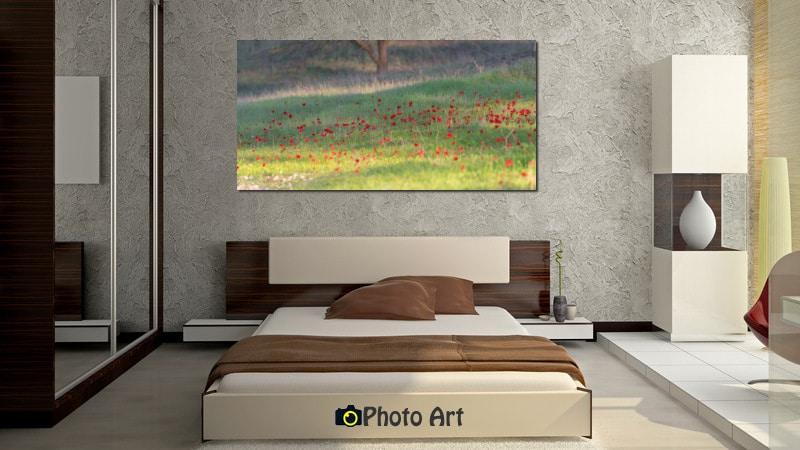 תמונת אדומות משתלבת נפלא כתמונת קיר בחדר שינה