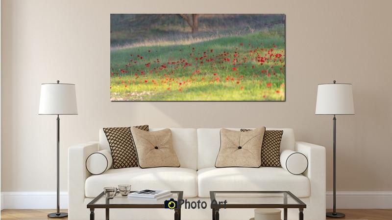 הדמיה של תמונת אדומות ועוד מגוון תמונות של פרחים נפלאים