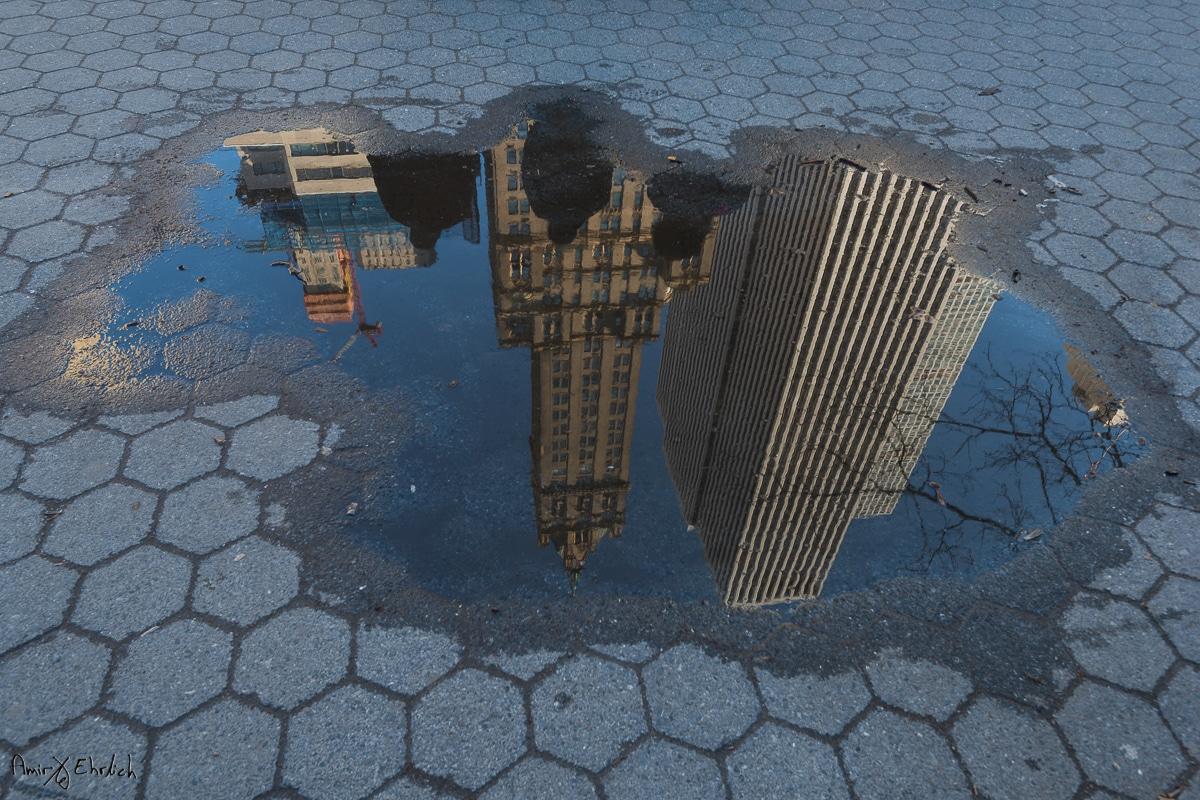 ניו יורק בשלולית