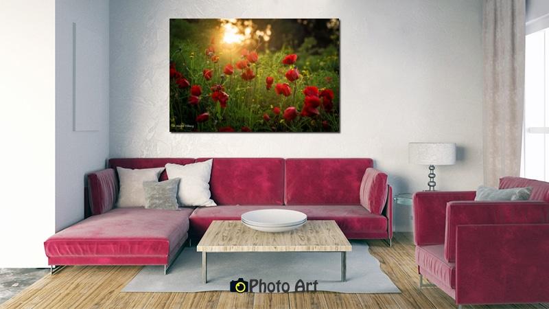 תמונת שקיעה אדומה שכזאת על קיר הסלון