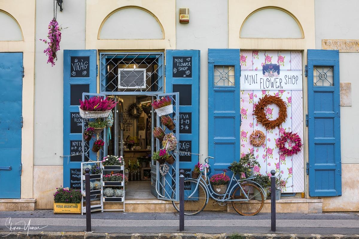 תמונה אורבנית פרחונית עם צבעים חזקים של ורוד וכחול. תמונה שמתאימה לבית